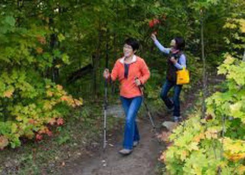 加拿大多伦多华助中心、辽宁协会、辽宁商会周末健康徒步游活动